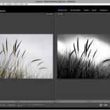 Lightroom on Demand: Kreative und selektive Bildbearbeitung